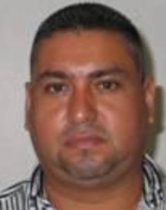 Gulf cartels El Wicho