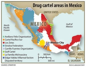 Mexican-drug-cartels