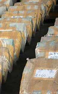 830 Kilos of Marijuana confiscated Veracruz